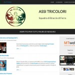Sito Web Assi Tricolori